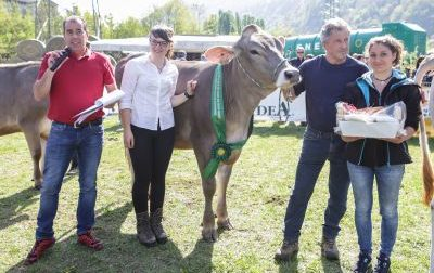 Mostra agricola in Valle San Martino