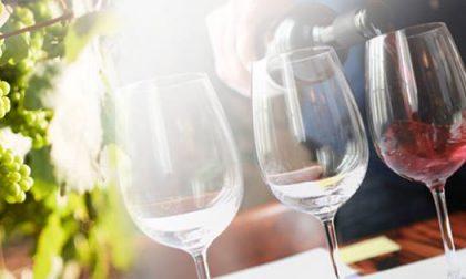 Onav Lecco: nuova stagione alla scoperta del vino