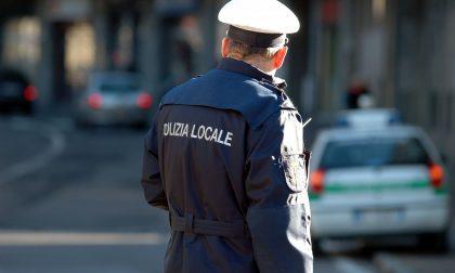 Vigile urbano aggredito da uno straniero senza biglietto dell'autobus