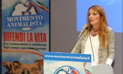 Michela Vittoria Brambilla tende la mano a Nava e Piazza