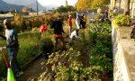 Stop ai profughi per la cura del verde: l'indignazione di Appello e di Straniero