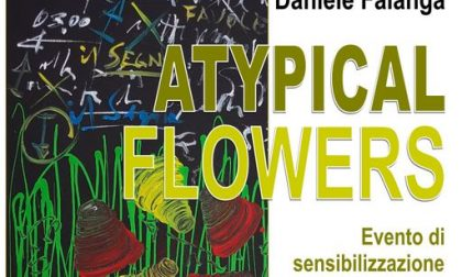 "A Olginate sale il sipario sulla mostra ""Atypical Flowers""."