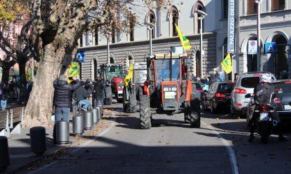 Sfilata di trattori per il Ringraziamento FOTO