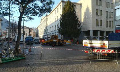 Lavori in piazza, arriva l'albero di Natale gigantesco