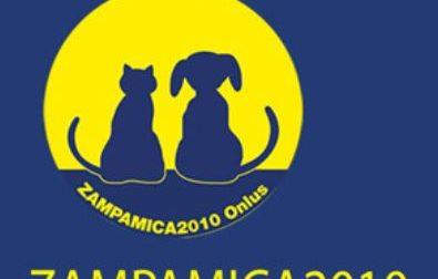 Zampamica2010 raccoglie cibo per cani e gatti all'Iperal di Civate