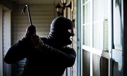 Ladri scatenati paesi sotto assedio