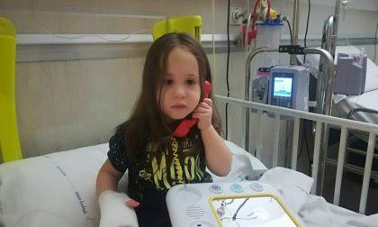 Maddalena, 2 anni, dona il midollo alla sorellina