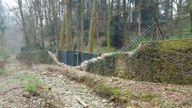 Lesmo, grave un giardiniere caduto da un albero a Villa Gernetto