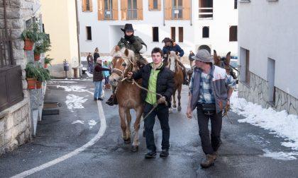 Cassina, tradizionale benedizione degli animali FOTO