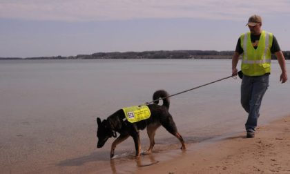 L'olfatto dei cani da salvataggio può fiutare l'inquinamento delle acque