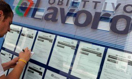 A Lecco un corso gratuito per disoccupati appartenenti alle categorie protette