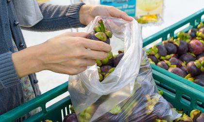 Sacchetti biodegradabili per il senatore una tassa inaccettabile