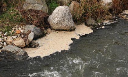 Rio Torto inquinato a valle del depuratore