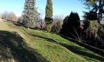 Un progetto per il recupero del frutteto del Parco di Villa Greppi