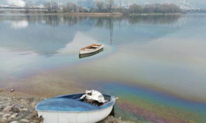 Inquietante macchia d'olio nel lago a Olginate FOTO