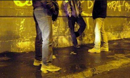 Baby vandali sorpresi e denunciati: nei guai 10 giovani teppisti di buona famiglia