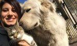 Free Miro, l'On Brambilla in campo per il cane sequestrato perchè abbaia troppo
