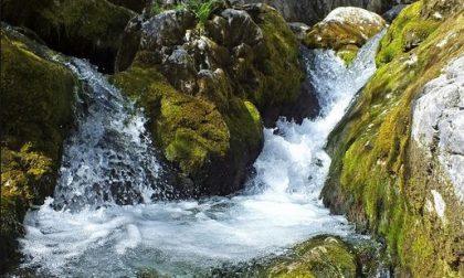 Lario Reti Holding lancia la sfida Water Reporter: racconta la natura dell'acqua in una foto