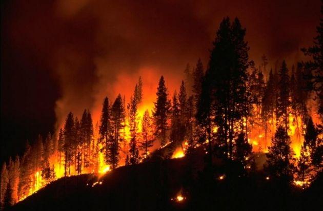 Allerta rischio incendi nei boschi del Lecchese