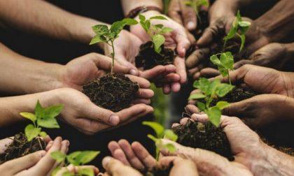 Un convegno sull'agricoltura sociale a Merate