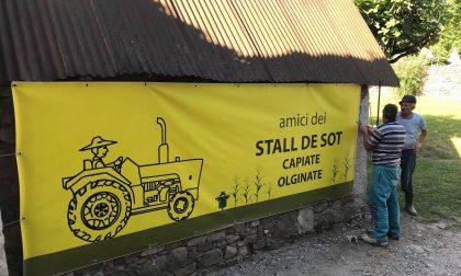 Olginate: annullata l'edizione 2020 della festa dell'AgriCultura