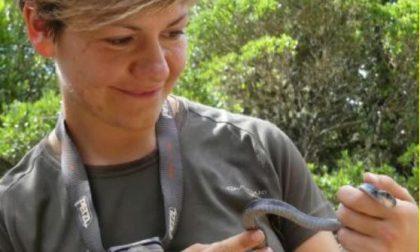 """""""Basta uccidere serpenti"""": l'appello di Benedetta, la """"snakebuster"""" di Calolzio"""