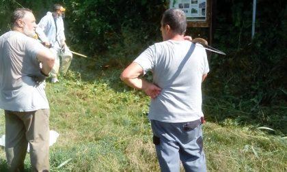 Volontari all'opera per il «Verde pulito»