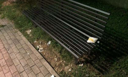 Pannolini sporchi e degrado al parco FOTO