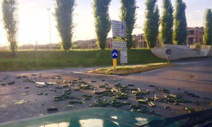 Pioggia di zucchine ieri sera a Merate