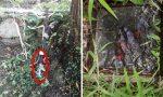 Carenza idrica a Vendrogno risolta: era colpa di allacciamenti non autorizzati