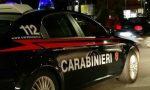 'Ndrangheta: blitz dei carabinieri contro il traffico di cocaina, 14 arresti VIDEO