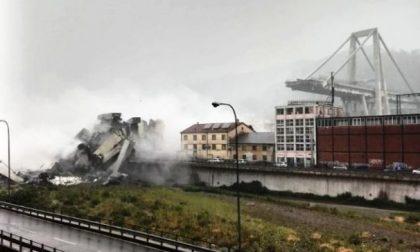 """Ponte crollato a Genova, Galbusera: """"Errare è umano, perseverare è diabolico"""""""
