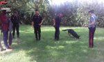 Controlli dei Carabinieri in parchi e stazioni ferroviarie: trovata la droga FOTO