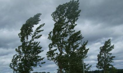 Raffiche di vento, chiusa a Bellano la Sp 72