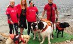 Bimbo diabetico attraversa il lago a nuoto col suo cane VIDEO