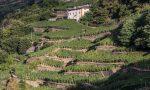 Muretti a secco dichiarati Patrimonio dell'Umanità dall'Unesco
