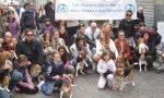 Green Hill, udienza per gli animalisti che salvarono i cagnolini che sfilarono a Lecco VIDEO