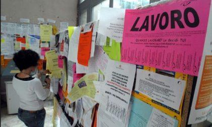 State cercando lavoro? Ecco le offerte in provincia di Lecco (e ce ne è per tutti i gusti...)