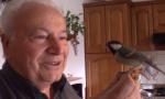 La curiosa amicizia tra un pensionato e un uccellino FOTO