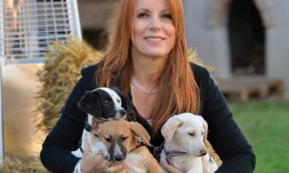 """Domenica al Lavello """"Dog show"""" della Lega italiana per la Difesa degli Animali"""