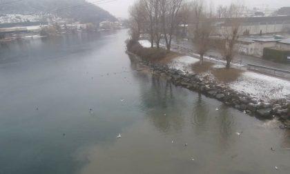Depuratore di Lecco: nuova richiesta di controlli per gli sversamenti FOTO