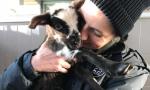Ecco Silvì: l'agnellina di pochi giorni salvata dai volontari Enpa
