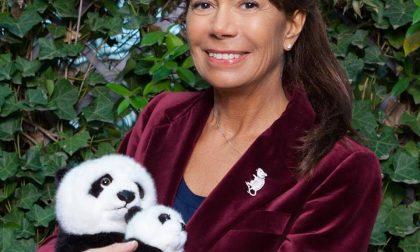 Serata con WWF Lecco e CAI alla scoperta dei lupi