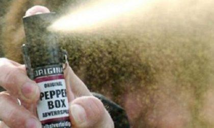Spray al peperoncino in classe in Brianza, è il caos