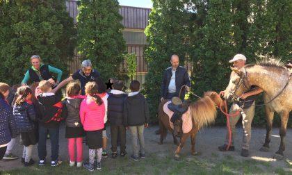 I veterinari dell'Ats Brianza portano gli animali nelle scuole di Lecco FOTO