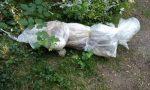 Sacco sospetto a bordo strada, dentro c'è la carcassa di un cane