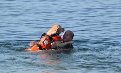 Cuginette rischiano di annegare, salvate dallo zio e dai cani bagnino