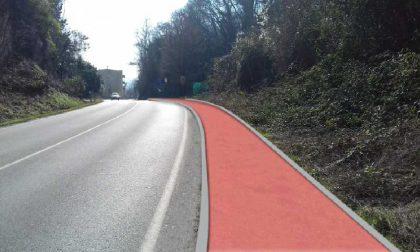 Provinciale più sicura per i pedoni: al via i lavori per il nuovo marciapiede