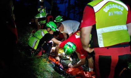 Aggredito da un muflone: 39enne in ospedale