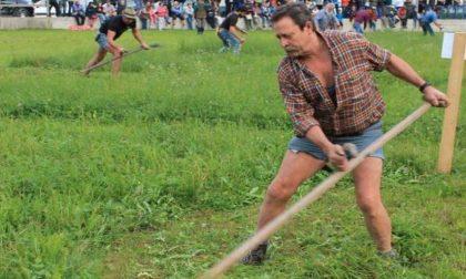 Partono le Manifestazioni Zootecniche Valsassinesi TUTTO IL PROGRAMMA